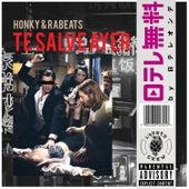 Te Salve Ayer by Honky