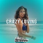 Crazy Loving by Mr. Shammi