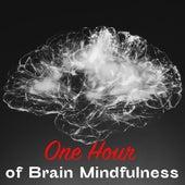 One Hour of Brain Mindfulness von Study Music