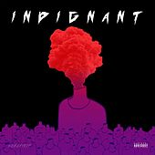 Indignant by Switch
