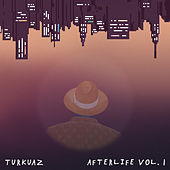 Afterlife Vol. 1 - EP by Turkuaz