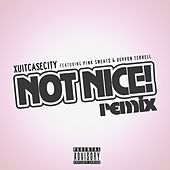 Not Nice (Remix) by Xuitcasecity