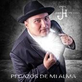 Pedazos de Mi Alma by Juan Treviño