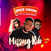 Missing Rib by Spice Vision