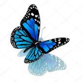 Butterfly de Luisa Daniere