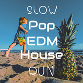 Slow Pop EDM House Run by Various Artists