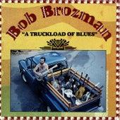 A Truckload Of Blues by Bob Brozman