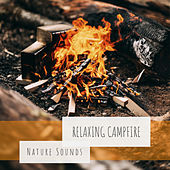 Relaxing Campfire by Nature Sounds (1)