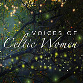 Voices Of Celtic Women by Various Artists