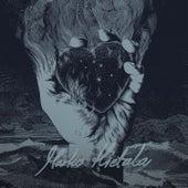 Mustan sydämen rovio by Marko Hietala