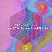 Nothing Is The Same - Single de Pinto