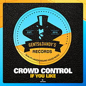 If You Like by Crowd Control