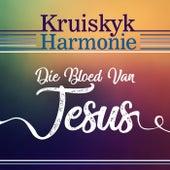Die Bloed Van Jesus by Various Artists