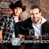 Ao Vivo em Londrina de Davi & Fernando