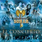 Atrévete A Soñar El Concierto (En Vivo) de Various Artists