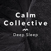 Deep Sleep by The Calm Collective