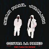 Contra La Pared (The FaNaTiX Remix) by Sean Paul