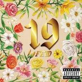 19 de FEID