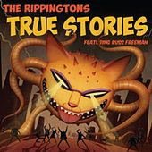 My Promise To You (feat. Jeffrey Osborne) by The Rippingtons