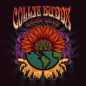 Show Love de Collie Buddz