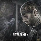Navazesh 2 (Instrumental) by Amir Tataloo