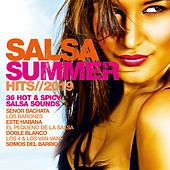 Salsa Summer Hits 2019 de Various Artists