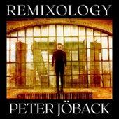 Remixology von Peter Jöback