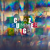 Crazy Summer Night: Acoustic Covers van Various Artists