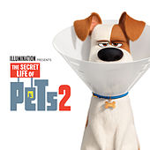 It's Gonna Be A Lovely Day (The Secret Life of Pets 2) de LunchMoney Lewis