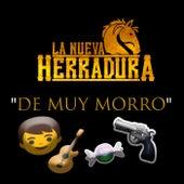 De Muy Morro de La Nueva Herradura