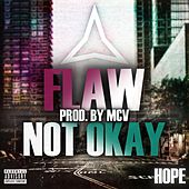 Flaw (Not Okay) by Hope