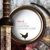 Siegfried: Brünnhilde's awakening by Hallé
