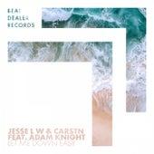 Let Me Down Easy de Jesse L W
