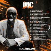 Vamo Que Vamo by MC Mr Bim