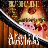A Pan Pipe Christmas by Ricardo Caliente