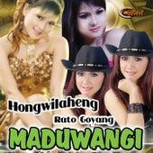 House Maduwangi de Various Artists