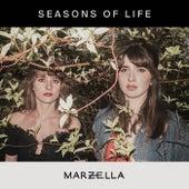 Seasons of Life by Marzella