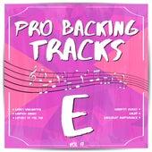 Pro Backing Tracks E, Vol.17 by Pop Music Workshop