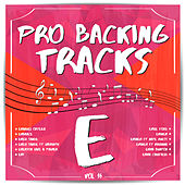 Pro Backing Tracks E, Vol.16 by Pop Music Workshop