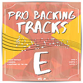 Pro Backing Tracks E, Vol.24 by Pop Music Workshop