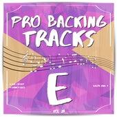 Pro Backing Tracks E, Vol.23 by Pop Music Workshop