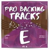 Pro Backing Tracks E, Vol.22 by Pop Music Workshop