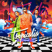 Tropicalia by Ilegales