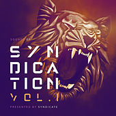 Sounds of Syndication, Vol .1 Presented by Syndicate de Various Artists