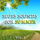 Blues Sounds For Summer vol. 1 de Various Artists