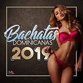 Bachatas Dominicanas 2019 de Various Artists