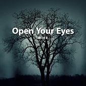 Open Your Eyes by Wink