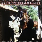 Cantar Galponeiro de José Cláudio Machado