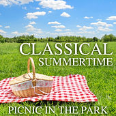 Classical Summertime Picnic In The Park de Various Artists
