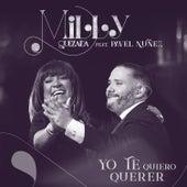Yo Te Quiero Querer by Milly Quezada